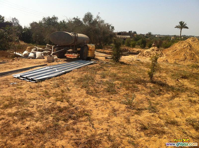 قوات حرس الحدود تكتشف وتدمر 6 بيارات على الإتجاه الإستراتيجى الشمالى الشرقى فى نطاق الجيش الثانى ghlasa13770918186112.jpg