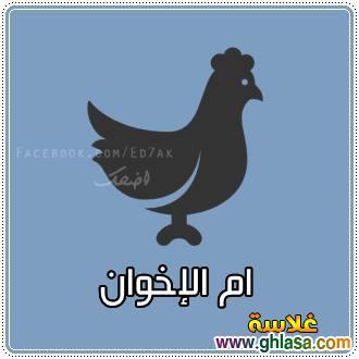 نكت مصرية على الاخوان 2019 ، صور نكت مضحكة على صفوت حجازى و الاخوان2019 ، نكتة الاخوان2019 ghlasa1377449790911.jpg