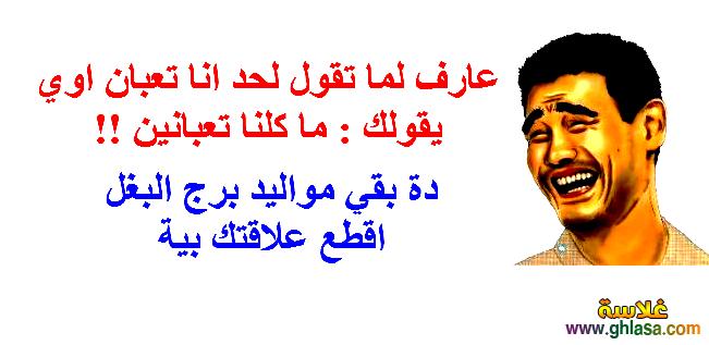 نكت مصرية جديدة 2018 ، صور نكت فيس بوك2018 ، تكت اساحبي2018 ghlasa1377451804253.png