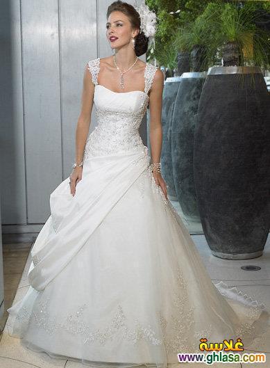 صور فستان زفاف للعروسة المصرية 2018 ، فساتين زفاف مصرية 2018 Wedding Dresses2018 ghlasa1377489344417.jpg