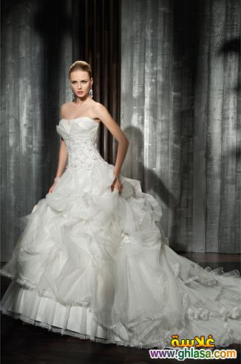 صور فستان زفاف للعروسة المصرية 2018 ، فساتين زفاف مصرية 2018 Wedding Dresses2018 ghlasa1377489344489.jpg