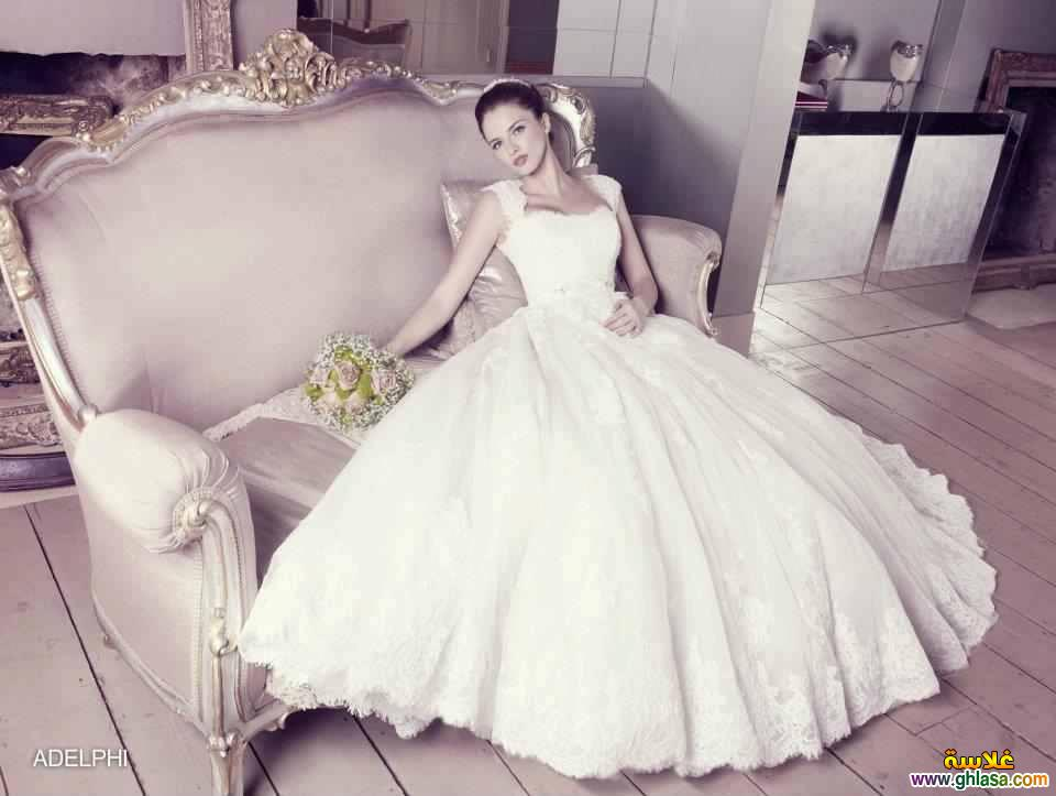 فساتين زفاف 2018 ، Wedding dresses 2018 ، صور فستان زفاف جديد 2018 ghlasa1377491261744.jpg