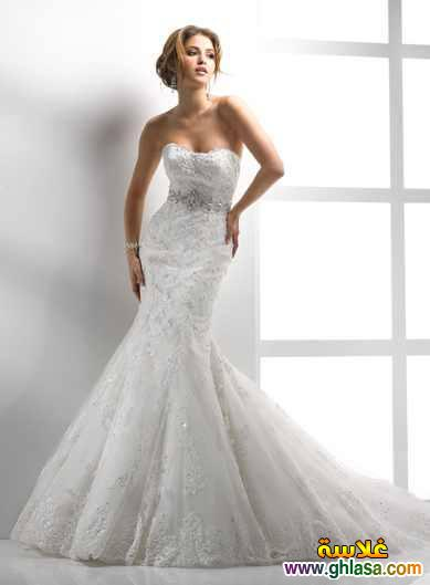 فساتين زفاف 2018 ، Wedding dresses 2018 ، صور فستان زفاف جديد 2018 ghlasa1377491261878.jpg