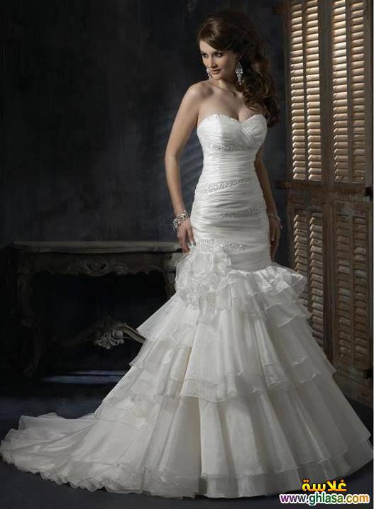 احدث فساتين زفاف 2019 ، فساتين قمر البنات 2019 ، صور فساتين زفاف موديلات 2019 ghlasa1377492107045.jpg
