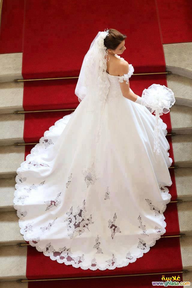 اروع تشكيلة فساتين زفاف جميلة بنات 2018 ، صور فستان الزفاف الجديد المميز 2018 ghlasa1377493020841.jpg