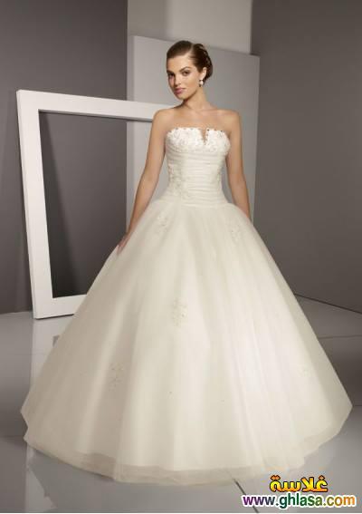اروع تشكيلة فساتين زفاف جميلة بنات 2018 ، صور فستان الزفاف الجديد المميز 2018 ghlasa1377493021025.jpg