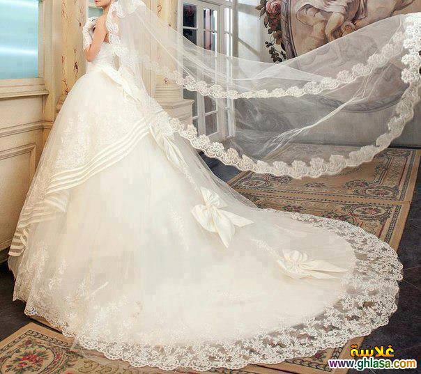اروع تشكيلة فساتين زفاف جميلة بنات 2018 ، صور فستان الزفاف الجديد المميز 2018 ghlasa1377493021046.jpg