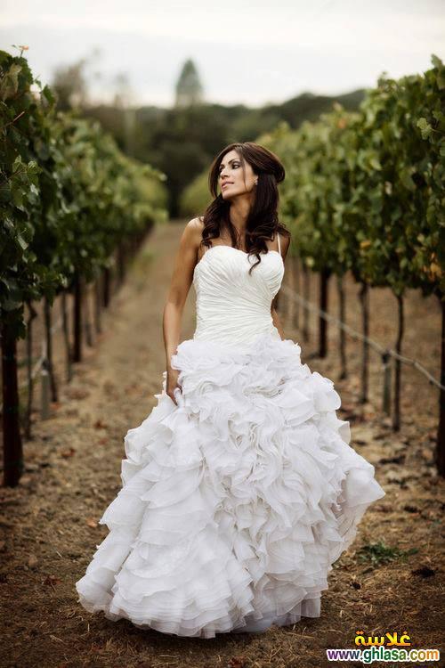 اجمل صور فساتين زفاف ، صور فساتين زفاف 2019 ، مجموعة فساتين ليلة العمر 2019 ghlasa1377493489265.jpg