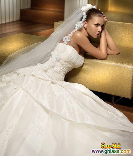 اجمل صور فساتين زفاف ، صور فساتين زفاف 2019 ، مجموعة فساتين ليلة العمر 2019 ghlasa1377493489389.jpg
