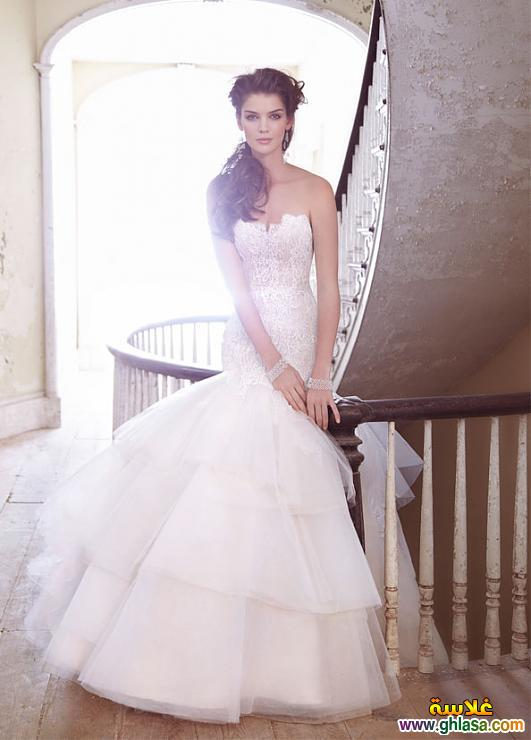 صور احدث فساتين زفاف 2019 فساتين جديده, للزفاف روعه 2019 ghlasa1377913284071.jpg