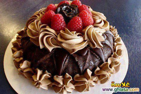 صور عيد ميلاد شهر سبتمبر  ، صور تورتة عيد ميلاد وهدايا لعيد الميلاد  ghlasa1378257707196.jpg