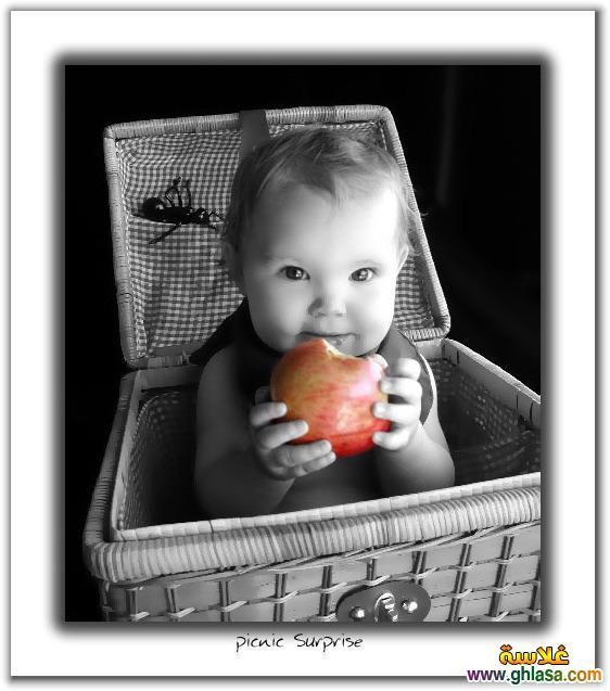 صور اطفال مواليد 2018 ، صور اطفال صغيرة 2018 ، صوراطفال-جميلة2018 ghlasa1378451660866.jpg
