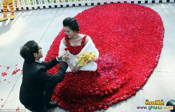 أجمل صور حب جديدة 2019 ، أروع صور حب رومنسية ، صورحب-رومانسية،رومنسية2019 ghlasa1379281957079.jpg