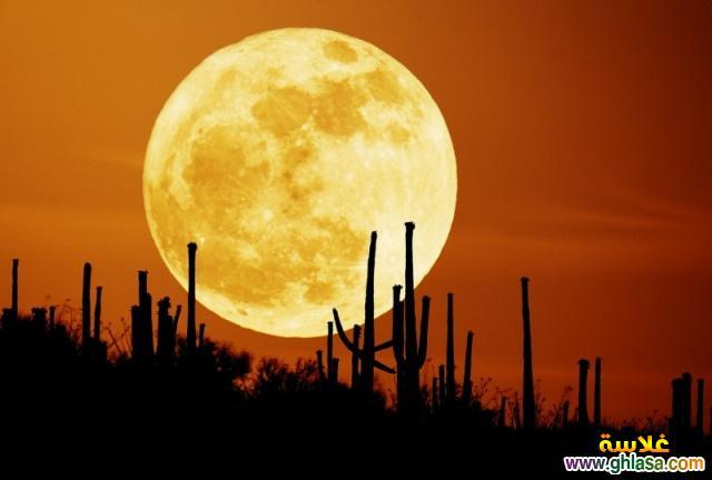 صور جديده للقمر وجماله 2019 ghlasa1380670310694.jpg