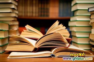 بحث علمى عن التنمية المستدامة  ، بحث جاهز للطبع عن التنمية المستدامة فى الوطن العربي ghlasa1381327535521.jpg