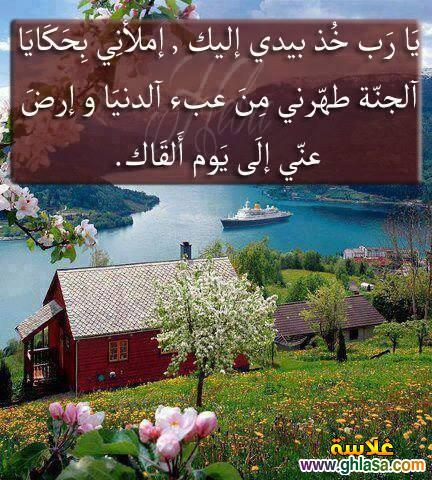 صور حكم اسلامية جديدة 2019 ، صور دعاء و حكم فيس بوك للنشر 2019 ghlasa1381449460647.jpg