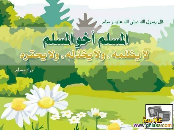 صور منشورات و اشعارات اسلامية 2018 ، صور حكم للنشر فى الفيس بوك 2018 ghlasa1381450069083.jpg