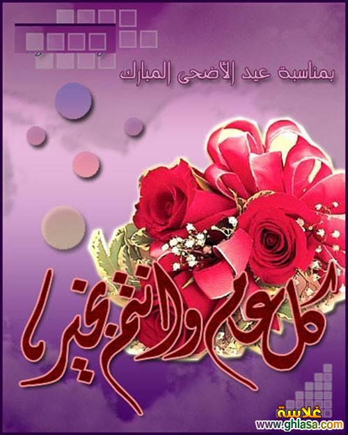 صور ورسائل مصرية بمناسبة عيد الاضحى 2018-1434 ، صور عيد سعيد ومسجات عيد الاضحى 2018-2018 ghlasa1381613685614.jpg
