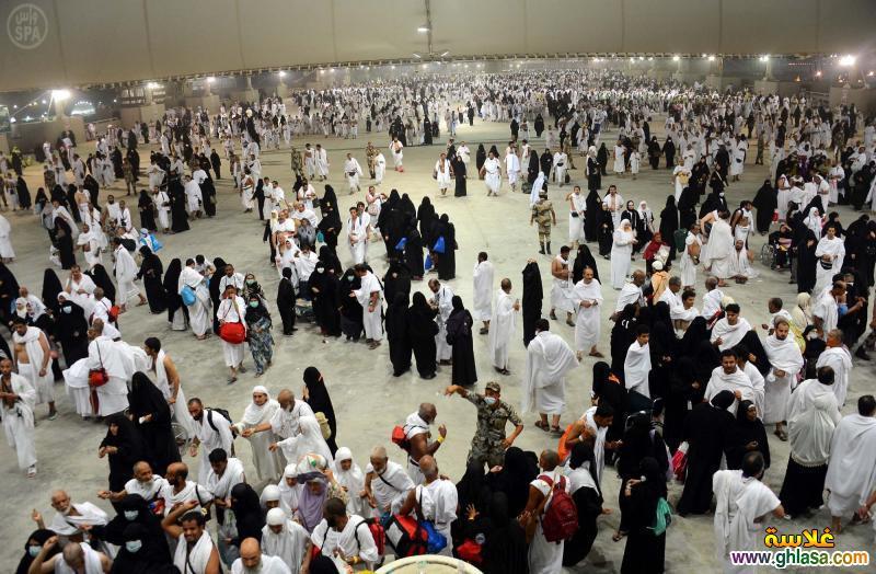 صور من موسم الحج لحجاج بيت الله 1441 ، صور الحج 2019 ghlasa1381782771162.jpg