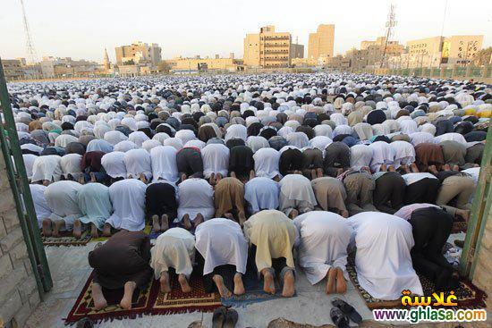 صور من موسم الحج لحجاج بيت الله 1439 ، صور الحج 2019 ghlasa1381782771429.jpg