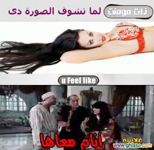 نكت المصريين على فيلم القشاش ورقص صافيناز ، نكت مضحكة على فضيحة فيلم القشاش واغراء الراقصة صافيناز ghlasa1382616749912.png