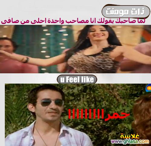 نكت المصريين على فيلم القشاش ورقص صافيناز ، نكت مضحكة على فضيحة فيلم القشاش واغراء الراقصة صافيناز ghlasa13826167504110.png