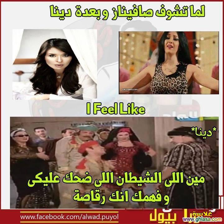 نكت المصريين على فيلم القشاش ورقص صافيناز ، نكت مضحكة على فضيحة فيلم القشاش واغراء الراقصة صافيناز ghlasa1382616873732.jpg