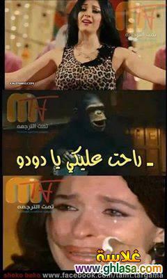 نكت المصريين على فيلم القشاش ورقص صافيناز ، نكت مضحكة على فضيحة فيلم القشاش واغراء الراقصة صافيناز ghlasa1382616873783.jpg