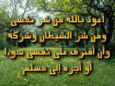 صور حكم اسلامية للنشر يوم الجمعة ، صور اسلامية فيس بوك للنشر 2019 ghlasa1383415237911.jpg