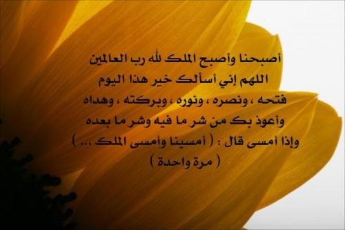 صور يوم الجمعة - صور نشر اسلامية يوم الجمعة ، صور فضل يوم الجمعة فيس بوك ghlasa1383415793629.jpg