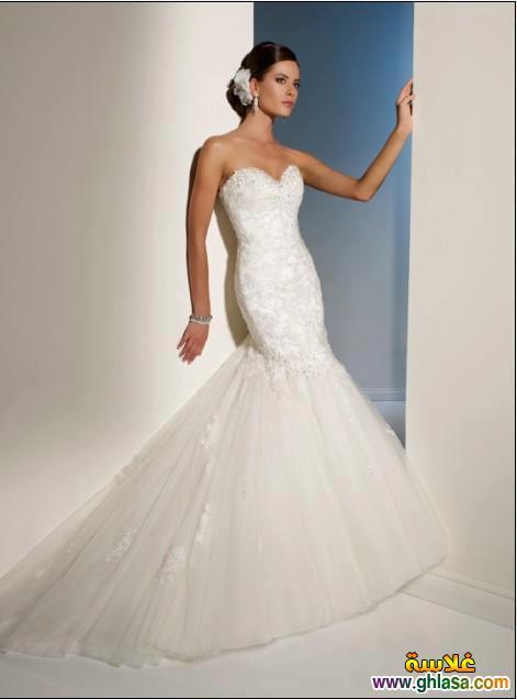 Wedding Dresses 2018 ، صور زفاف جديدة مميزة 2018 ghlasa1386299754033.jpg
