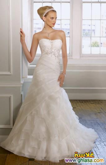 Wedding Dresses 2018 ، صور زفاف جديدة مميزة 2018 ghlasa1386299754054.jpg