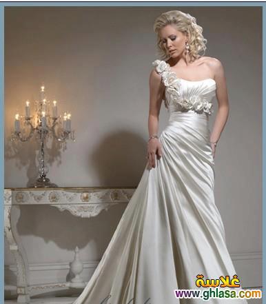 Wedding Dresses 2018 ، صور زفاف جديدة مميزة 2018 ghlasa1386299754075.jpg