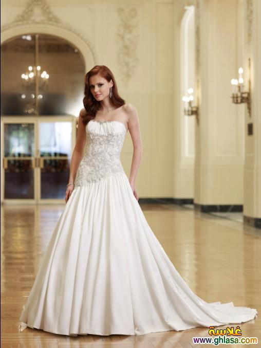 Wedding Dresses 2018 ، صور زفاف جديدة مميزة 2018 ghlasa1386299754096.jpg