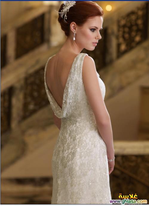 Wedding Dresses 2018 ، صور زفاف جديدة مميزة 2018 ghlasa1386299754148.jpg