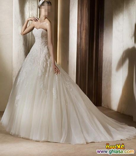 Wedding Dresses 2018 ، صور زفاف جديدة مميزة 2018 ghlasa1386299754169.jpg
