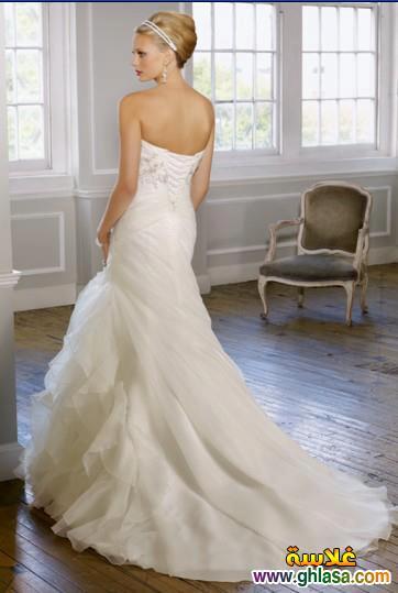 صور فستان زفاف ابيض 2018 ، أجمل صور فساتين زفاف 2018 ghlasa1386300212044.jpg