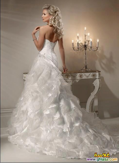 صور فستان زفاف ابيض 2018 ، أجمل صور فساتين زفاف 2018 ghlasa1386300367381.jpg