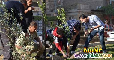 صور شباب من المنصوره يزرعه شجر لتجميل المنصوره ghlasa1386491745351.jpg