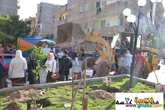 صور شباب من المنصوره يزرعه شجر لتجميل المنصوره ghlasa1386491745383.jpg