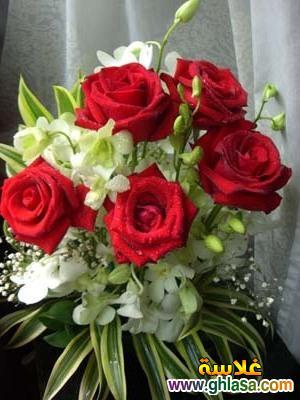 عيد ميلادك يا حبيبي اجمل الاعياد ghlasa1388496592042.jpg