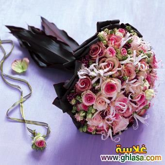 عيد ميلادك يا حبيبي اجمل الاعياد ghlasa1388496592084.jpg