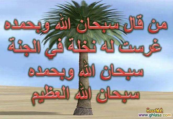 صور اسلامية شهر رمضان2021-1435 ، صور دعاء فيس بوك شهر رمضان 2021-1435 ghlasa1388680188018.jpg