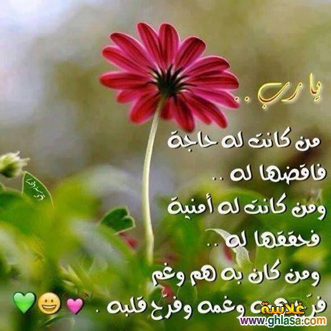 صور و رسائل بمناسبة المولد النبوى الشريف 2019 ، حكم اسلامية المولد النبوي الشريف 1439 photo_Islamic-33-.jpg