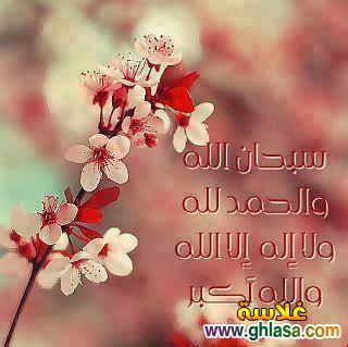 صور و رسائل بمناسبة المولد النبوى الشريف 2019 ، حكم اسلامية المولد النبوي الشريف 1439 photo_Islamic-35-.jpg